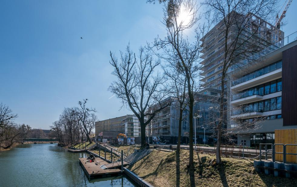 Powstaje zielona oaza wśród zabudowy Przedmieścia Oławskiego