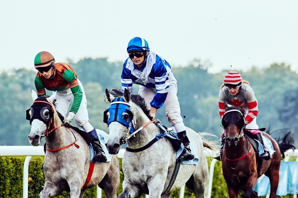 17 Dzień Wyścigowy - ZARRA KONTRA HIPSTER