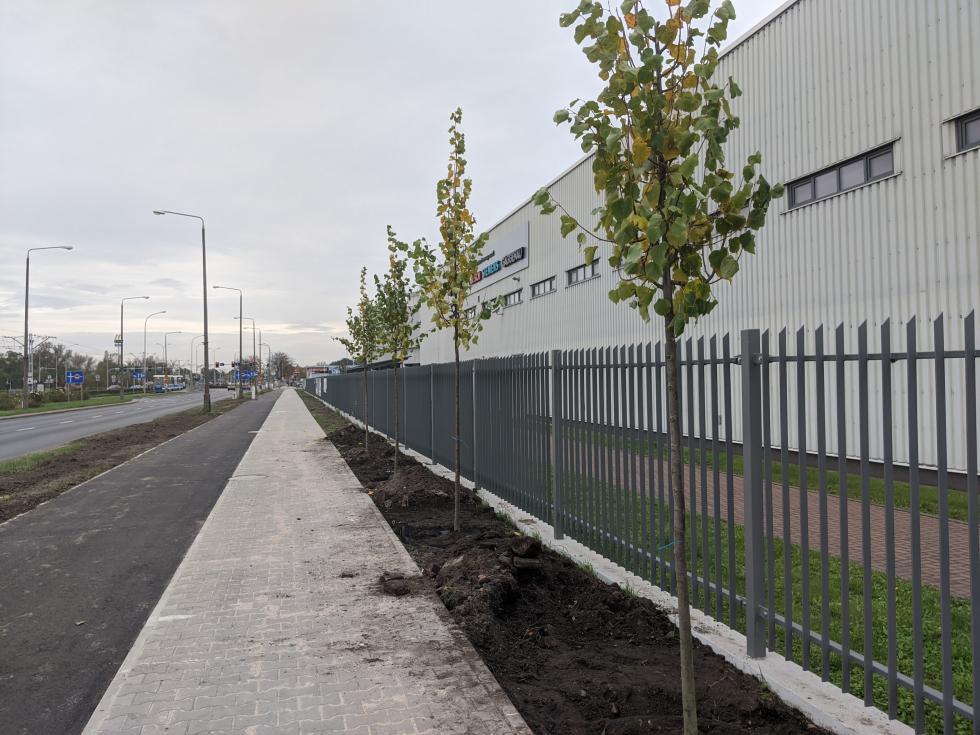 100 drzew i600 metrów ścieżki rowerowej ichodnika wpobliżu fabryk BSH