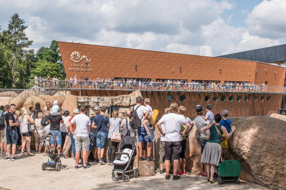 Rekordowe wakacje - 620 tys. osób odwiedziło wrocławskie zoo